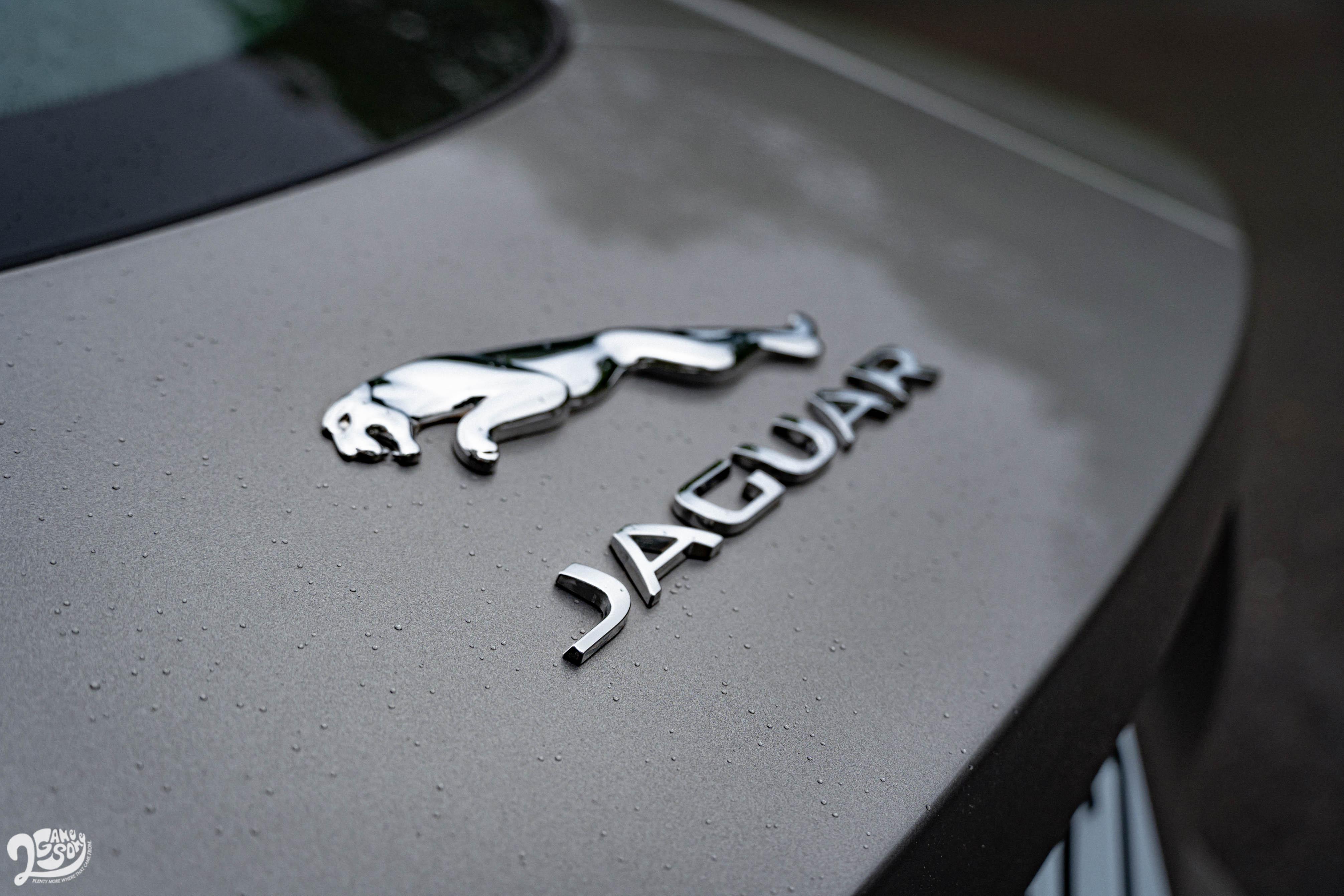 偌大的美洲豹與品牌字樣,點出 F-Type 的血統驕傲。