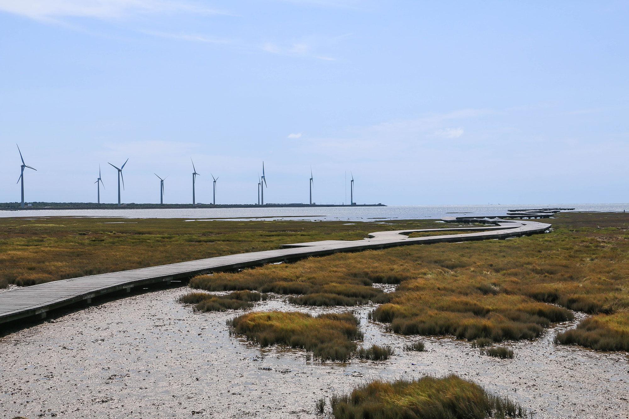 高美濕地目前已經有相對完整的規劃,也可以沿著木棧道深入潮間帶。