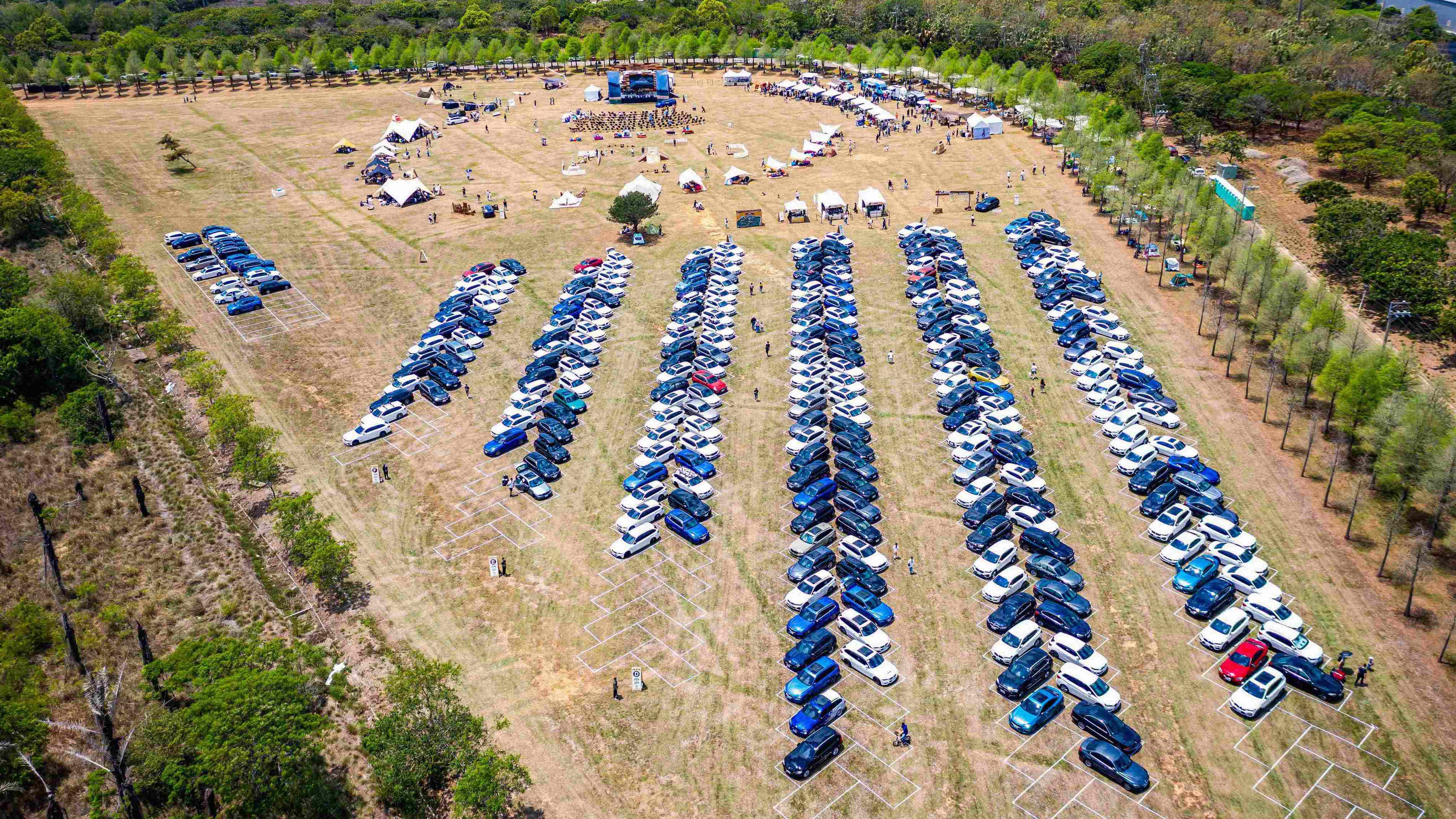 「BMW Touring Festival」近 300 台旅行車齊聚落羽松林