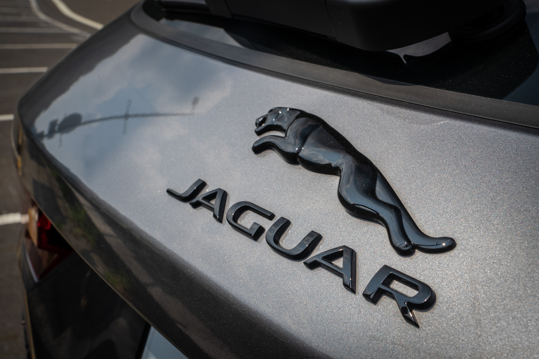 黑色的美洲豹與品牌名銘牌。