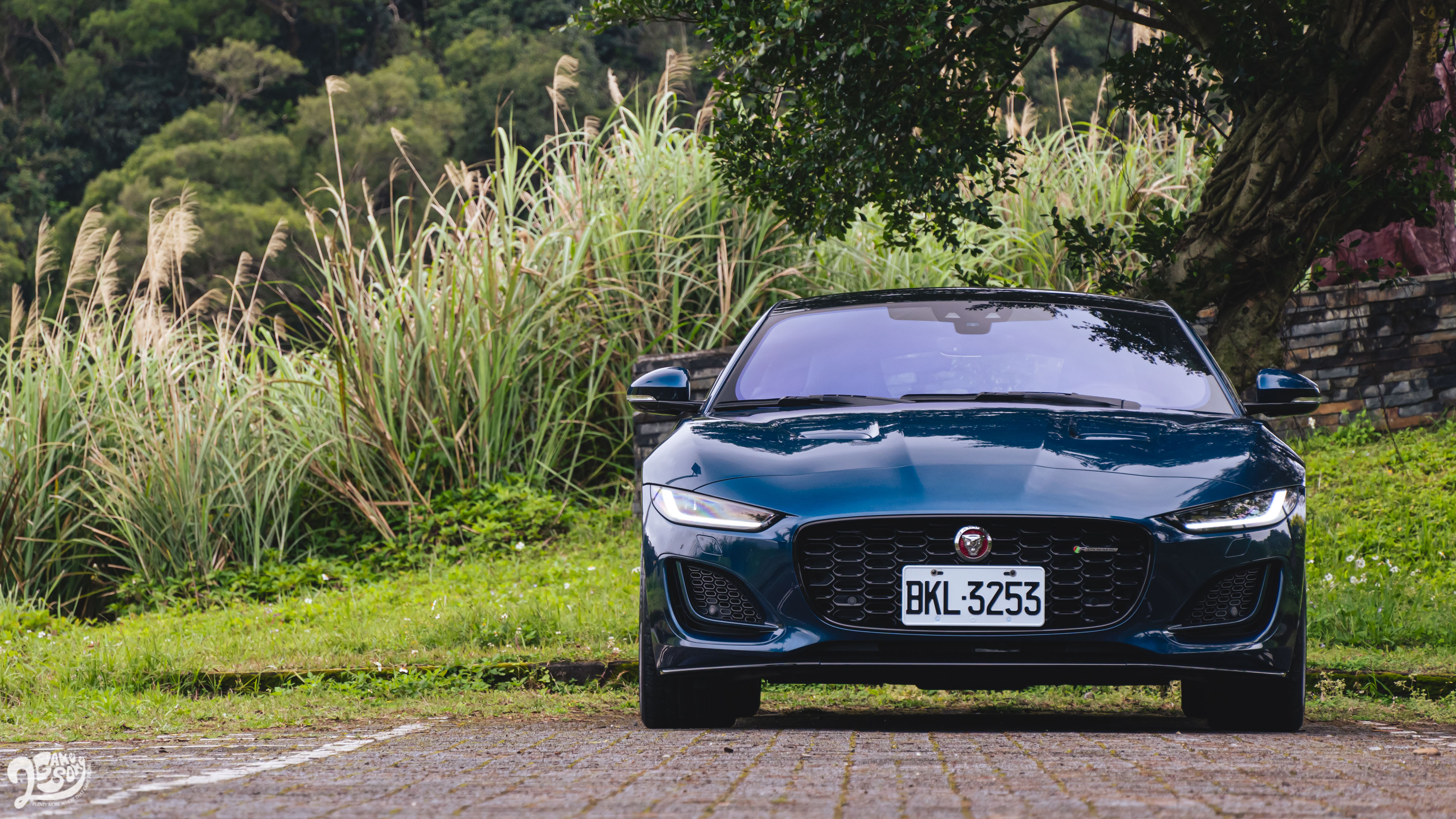 Jaguar F-Type P450 R-Dynamic 售價 486 萬元起。
