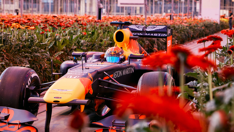 【影】沒有比賽,Red Bull 車手開 F1 荷蘭逛大街