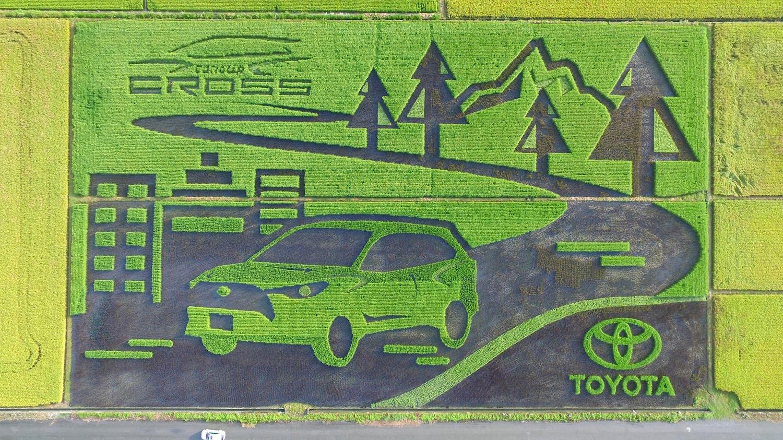 Toyota Corolla Cross 創意行銷兼作公益 捐贈 6 噸稻米